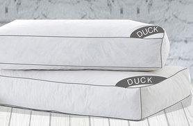 £9.99 instead of £59.99 (from Groundlevel) for a luxury overfilled duck feather and down pillow, or £18.99 for two - save up to 83%