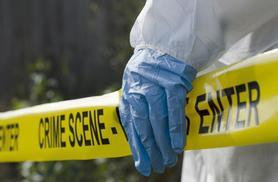 £29 instead of £220 (from NCC Resources) for an online forensic science course - save 87%