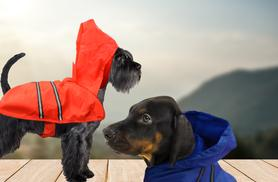 £6 instead of £12.99 (from SalonBoxed) for a dog raincoat, or £10 for two - save up to 54%