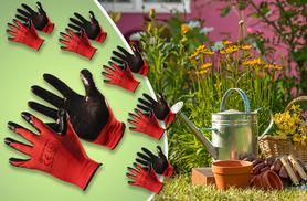£6.99 instead of £19.95 for 12 pairs of protective garden gloves from Wowcher Direct - save 65%
