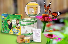 £11.99 instead of £27 for a live butterfly hatching kit, or £21.99 including a refill kit with five caterpillars from Wowcher Direct - save up to 56%