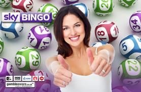 £5 for £50 Sky Bingo Credit - try your luck and save 90%