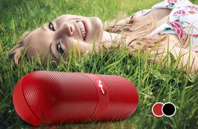 £9.99 instead of £29.99 (from eGlobal Shoppers) for a wireless Bluetooth speaker in a choice of two colours - save 67%