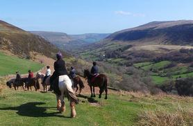£14 instead of up to £32 for a pony riding lesson and trek for one person, or £26 for two people with Grange Trekking, Wales - save up to 56%