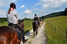 £39 for a 2-hour horse trail ride and picnic with Equine Learning, Wootton Wawen!