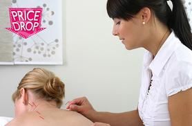 £19 instead of £330 (from Centre of Excellence) for an online IANLPC certified acupuncture course - save 94%