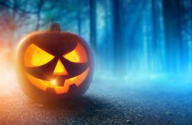 £3.50 for a child ticket to Halloween 'Fright Night' & 'Fireworks Spooktacular' or £6 for an adult ticket at Lower Drayton Farm, Penkridge - save up to 46%