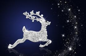 £7 instead of £59 (from Your Ideal Gift) for an 18k white gold-plated reindeer brooch - save 88%