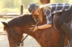 £39 for a three-hour horsemanship experience including a one-hour trail ride and tea with Equine Learning, Wootton Wawen - save 48%