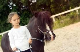 £45 instead of £65 for a one-day Frozen children's pony experience from Equine Learning - save 31%