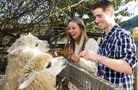 £5 instead of up to £13 for entry to The Llama Park for one adult and one child, or £8 for entry for two adults and two children - save up to 62%