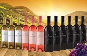 £34 (from Eassy Gifts) for a 12-bottle mixed case of award-winning Spanish wine - sip red, white and rosé!