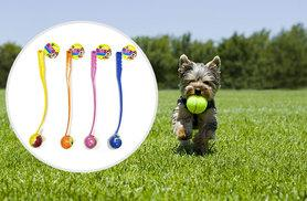 £4.99 instead of £14.99 for a dog ball launcher - choose from four colours and save 67%