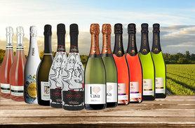 £59 instead of £119.91 (from San Jamon) for a 12-bottle selection of sparkling wine - see in the summer in style and save 51%