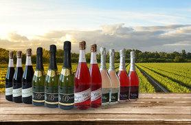 £39 instead of £95 (from Eassy Gifts) for 12 bottles of Italian and Spanish sparkling wines - save 59%