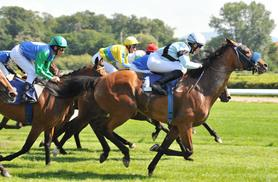 £59 for an afternoon tea at the races experience for two people from Buyagift - choose from three fabulous UK locations