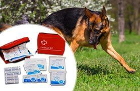 £7 instead of £14.99 (from Bunty Pet Products) for a pet first-aid kit - save 53%