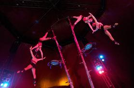 £7.50 instead of £18 for a front circle ticket to the Netherlands National Circus - save 58%