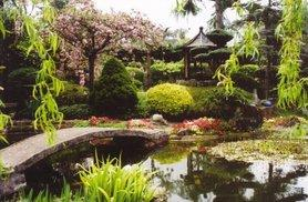 £9 instead of £14 for entry for two adults to the Pure Land Japanese Garden, North Clifton, or £13 for two adults and two children - save up to 36%