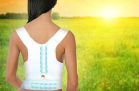 £8 (from Aneeks) for a 'posture-corrective' therapy support!