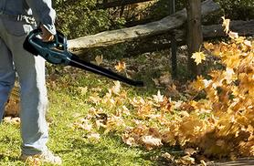 £44.99 instead of £109.99 (from Groundlevel.co.uk) for a cordless leaf blower with two speed settings - save 59%