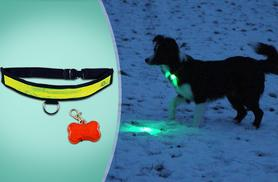 £4.99 instead of £9.99 (from Groundlevel.co.uk) for a flashing LED pet collar - keep your pets safe in the dark & save 50%