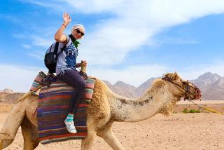 From £89pp for a two night Marrakech stay, camel ride, Hammam & flights, £139pp for three nights or from £159pp for four nights from Weekender Breaks – save up to 40%