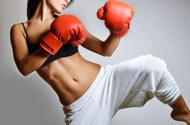 £9 for 3 private kickboxing or MMA lessons with Gannon's Black Belt Academy, Leicester