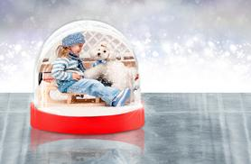 £4.99 instead of £8.99 (from Great Photo Gifts) for a personalised snow globe - save 44%