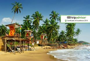 From £559pp instead of up to £853.90pp (from Major Travel) for a 7-night Goa break including flights and breakfast - save up to 35%