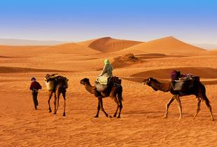 From £299pp (from Untravelled Paths) for a 4nt Sahara desert experience inc.  accommodation, guide, meals & transfers - save up to 40%