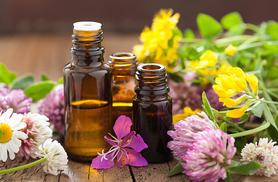 £14 (from SMART Majority) for an online aromatherapy course - save 94%