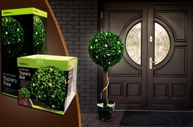 £11.99 instead of £39.95 for a solar powered LED topiary ball, or £22.99 for a topiary tree from Wowcher Direct - save up to 70%