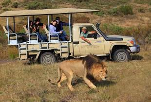 From £399pp instead of £744.47pp for a 5-night full board South African safari including daily game drives from the Botlierskop Private Game Reserve - save up to 46%
