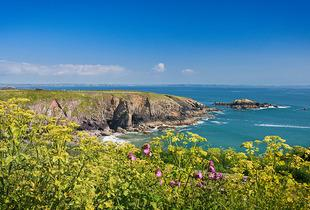 From £89 (at Howells Leisure) for an up to four-night weekend or midweek Pembrokeshire coast caravan break for up to six people - save up to 36%