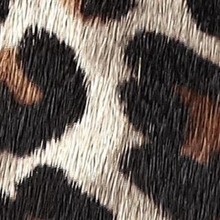 Leopard Pony