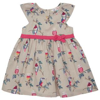Buy John Lewis Baby's Parrot Dress, Beige Online at johnlewis.com